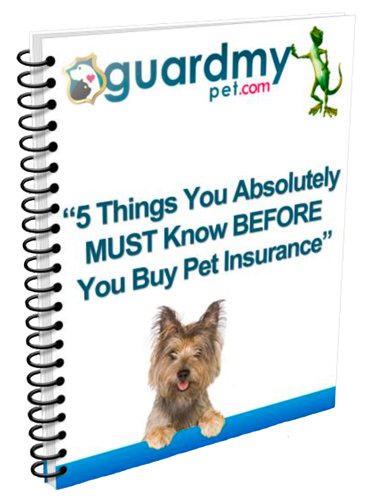 //guardmypet.com/wp-content/uploads/2017/12/5-must-knows-cover.png